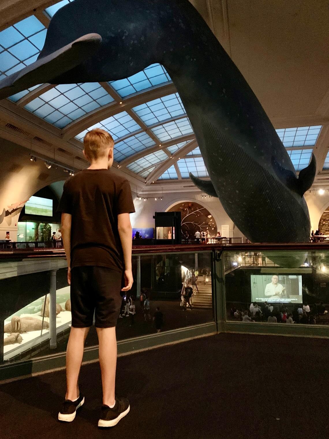 Digital Storytelling im Museum